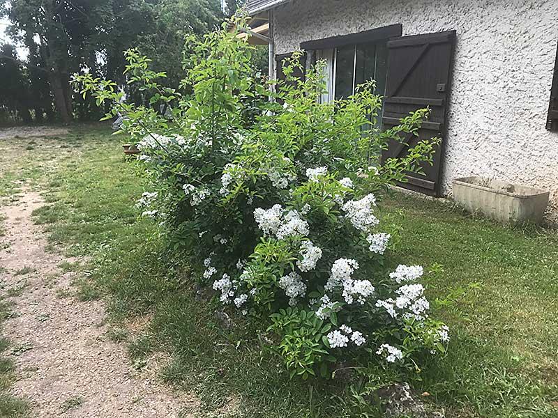 gite_chez_malo_jardin_du_gite